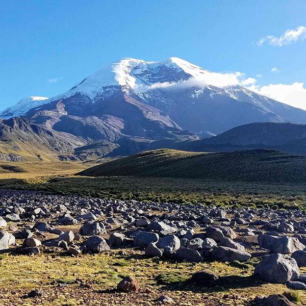 Field Studies Ecuador & Galápagos