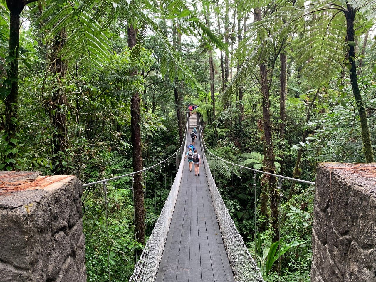 Campers hike across a bridge while on a field studies program in Costa Rica this Summer
