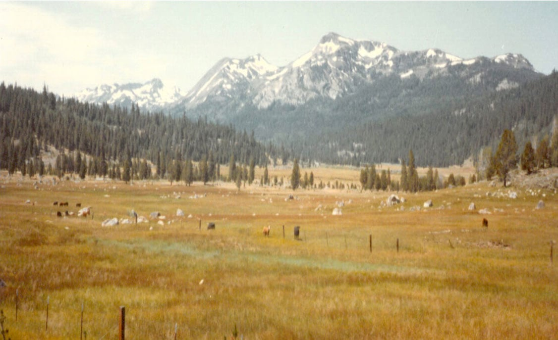 A beautiful mountain view on a coast to coast adventure biking trip in the summer of 1982.